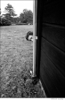 """533 Bob Dylan, """"How about this?"""" Ohayo Mountain Rd. home, Woodstock, NY, 1969"""