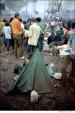 449 Woodstock Festival 1969, NY