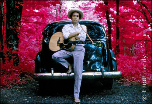 Bob Dylan, outside his Byrdcliffe home, infrared color film, Woodstock, NY, 1968. Photo By ©Elliott Landy, LandyVision Inc.