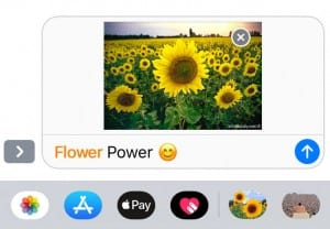 Flowervisions IOS Stickers by Elliott Landy